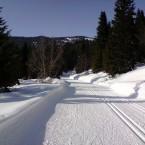 ski-trails-599641_1920