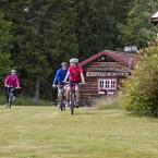 ARKIV 2013-07-15 Naturmiljön kring Vasaloppsleden, Vasaloppsarenan mellan Sälen och Mora. Sommartid.  Foto: Ulf Palm /  / kod 71515